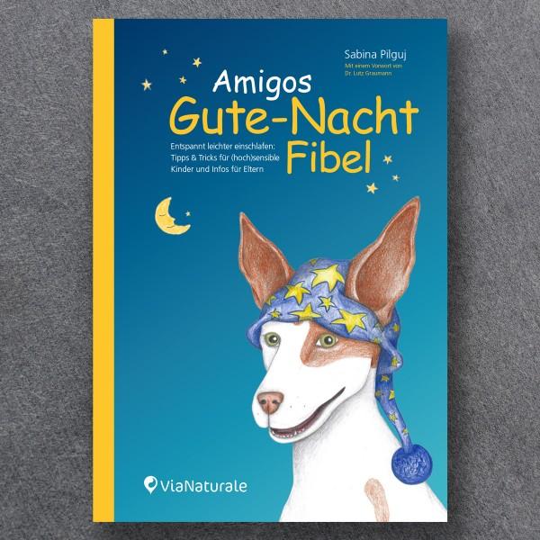 """Buch """"Amigos Gute-Nacht Fibel"""""""